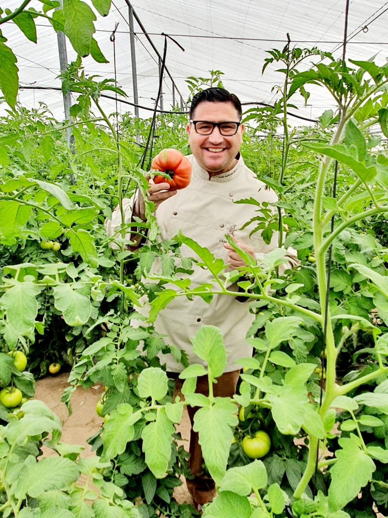 Historia del tomate palaciego